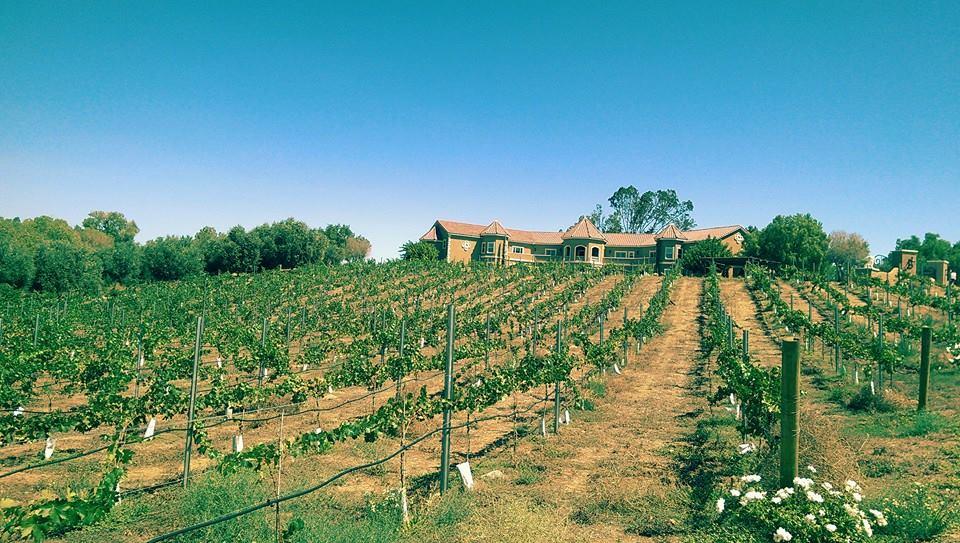 Inaugural Launch at Wilson Creek Winery in Temecula, California